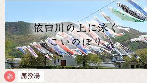 依田川の上に泳ぐこいのぼり