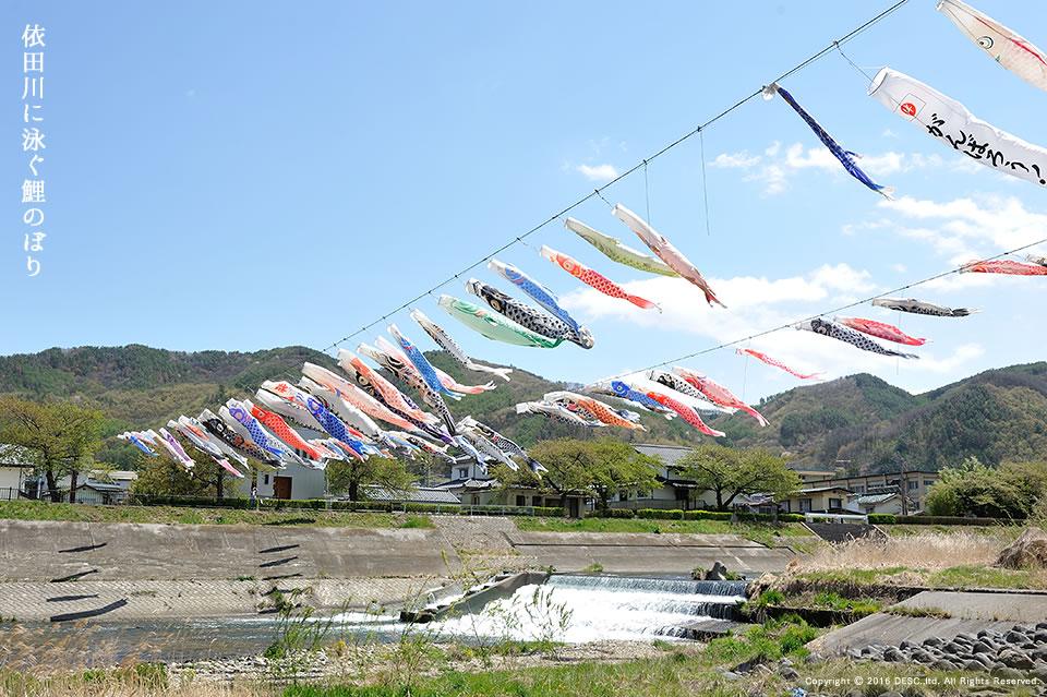 yodagawa_06